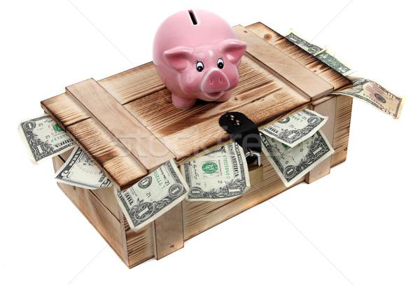 Różowy skarbonka przypadku Dolar zauważa Zdjęcia stock © pterwort