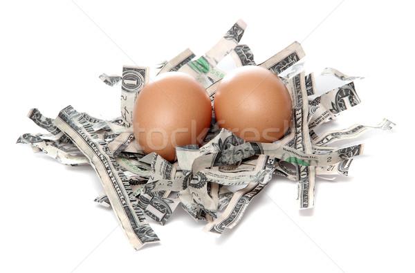 Stockfoto: Bruin · eieren · nest · dollar · witte · bank