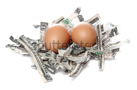 nest made of shredded dollars with brown eggs Stock photo © pterwort
