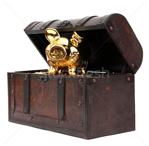 Open chest with piggy bank Stock photo © pterwort