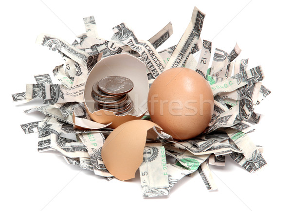 shredded dollars and eggshell with coins Stock photo © pterwort