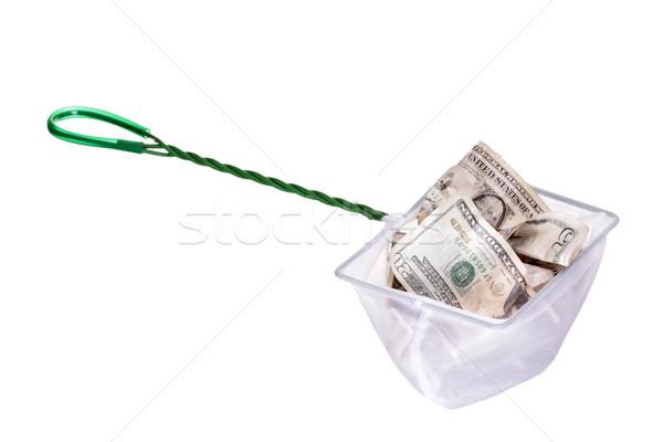 dollars in white net Stock photo © pterwort