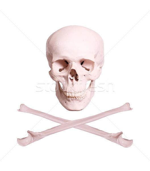 skull and crossbones Stock photo © pterwort
