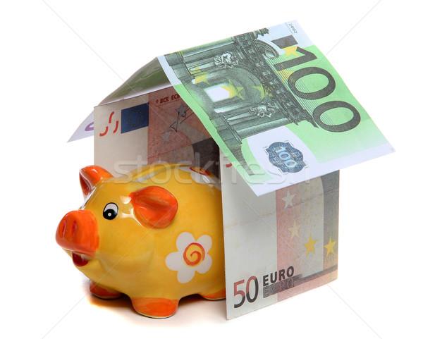 house of european money and piggy bank Stock photo © pterwort