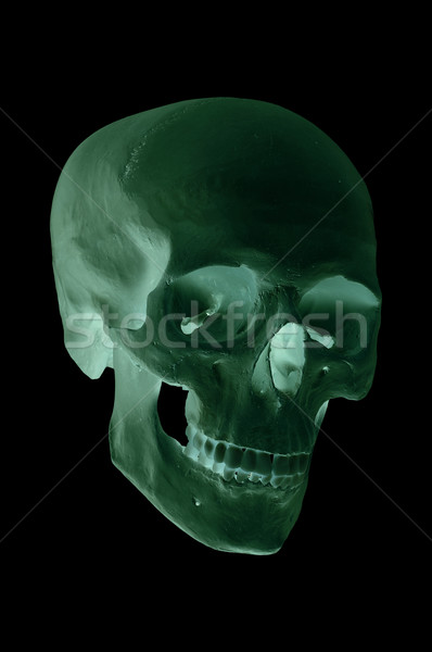 spooky green skull Stock photo © pterwort