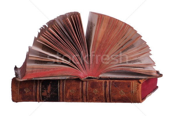 stack of old books with fanned pages Stock photo © pterwort