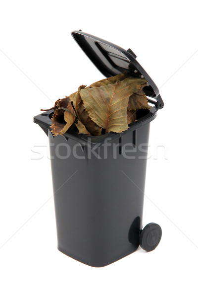 органический отходов черный мусор белый Сток-фото © pterwort