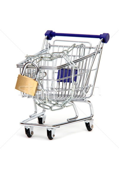 protected basket of commodities Stock photo © pterwort