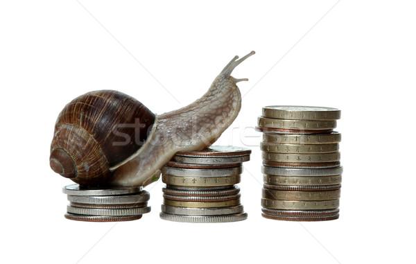 snail scrambles coins Stock photo © pterwort