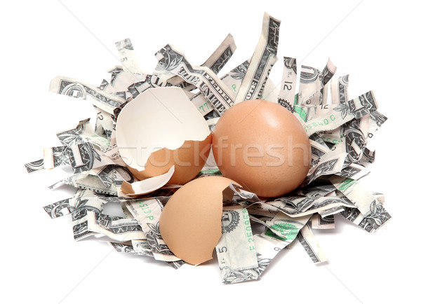 nest made of shredded dollar bank notes and broken eggshell Stock photo © pterwort