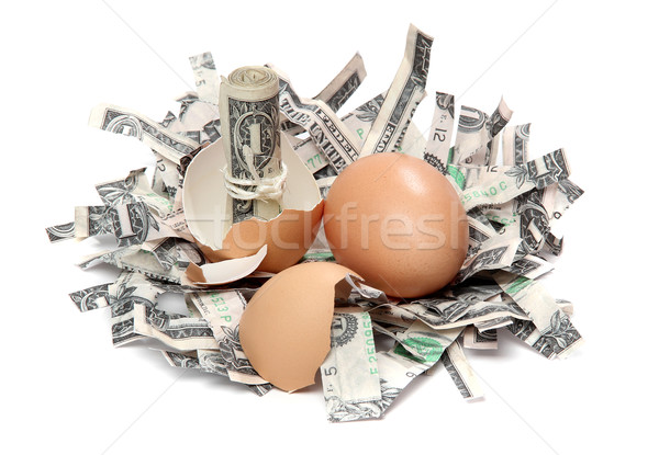 shredded dollar bank notes and broken eggshell Stock photo © pterwort