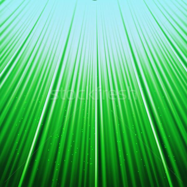нижний вверх мнение трава Blue Sky небе Сток-фото © punsayaporn