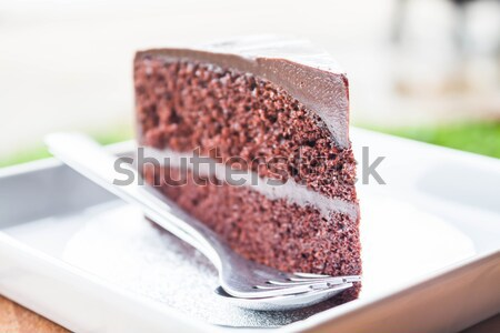 Verdubbelen chocolade vla cake lagen witte Stockfoto © punsayaporn