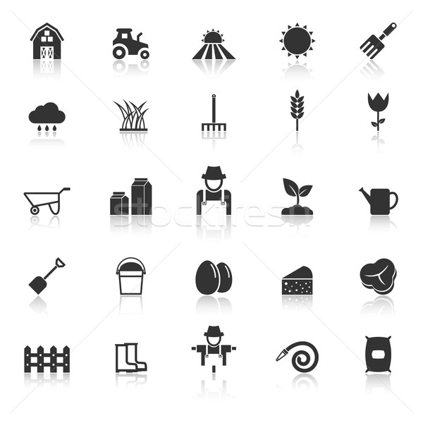 Farming icons with reflect on white background Stock photo © punsayaporn