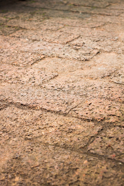 The pattern of laterite walkway in the park Stock photo © punsayaporn