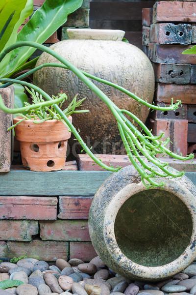 отдельно саду украшенный банку ретро Vintage Сток-фото © punsayaporn