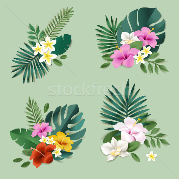Set of of nature and flower elements Stock photo © PureSolution