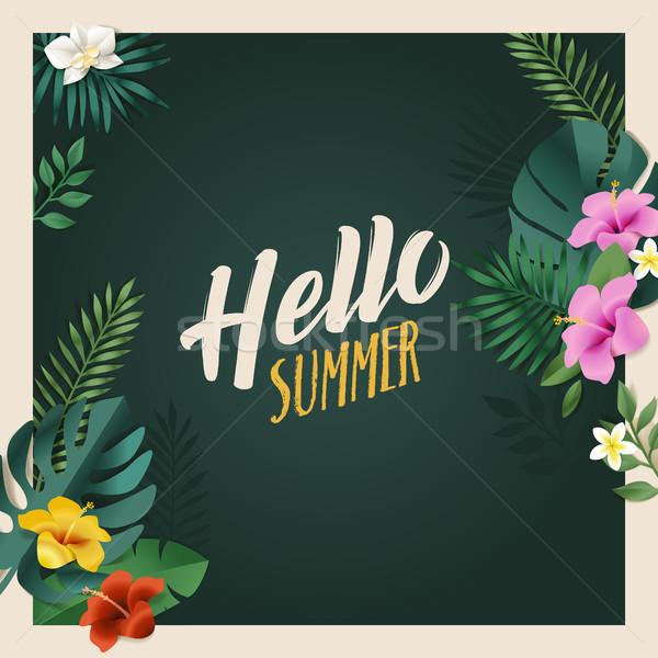 Hello nyár mobil közösségi média szalag nyáridő Stock fotó © PureSolution