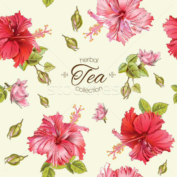 Hibiscus seamless pattern Stock photo © PurpleBird