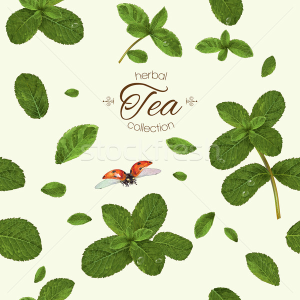 Mint tea pattern Stock photo © PurpleBird