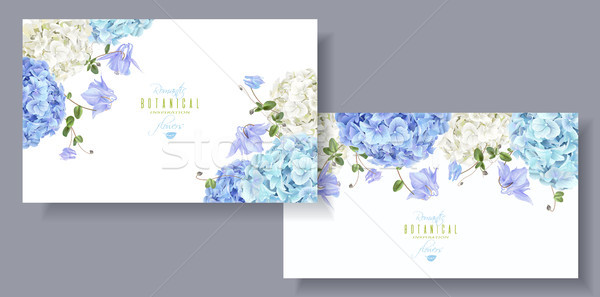 Hydrangea horizontal banners blue Stock photo © PurpleBird