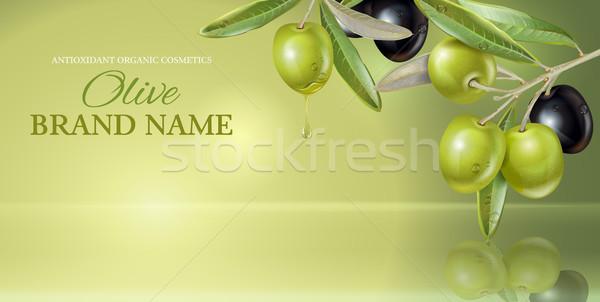 Olive vertical banner Stock photo © PurpleBird