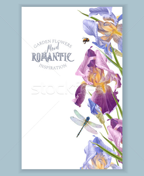 Iris vertical border Stock photo © PurpleBird
