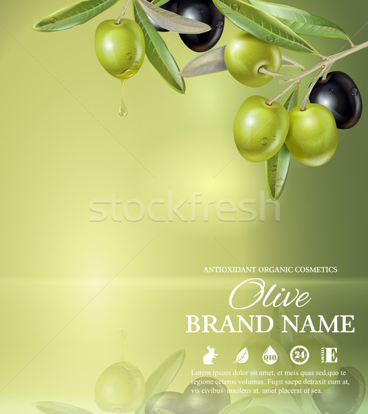 Stock photo: Olive green banner
