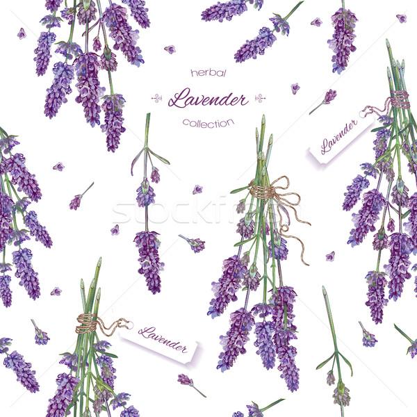 Lavender seamless pattern Stock photo © PurpleBird
