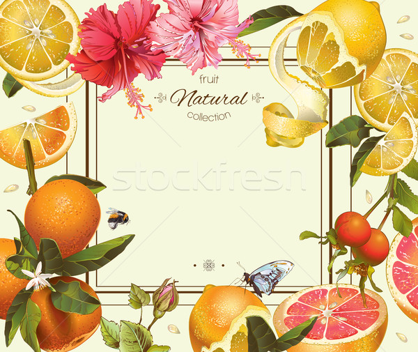 Vintage citrus frame Stock photo © PurpleBird