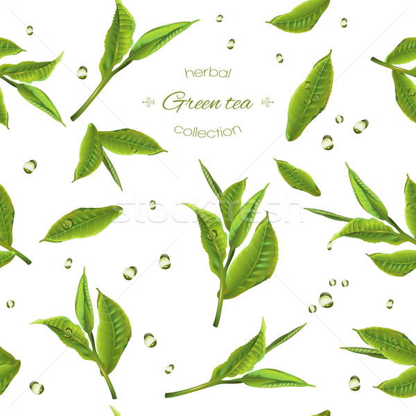 Groene thee patroon vector transparant theepot Stockfoto © PurpleBird