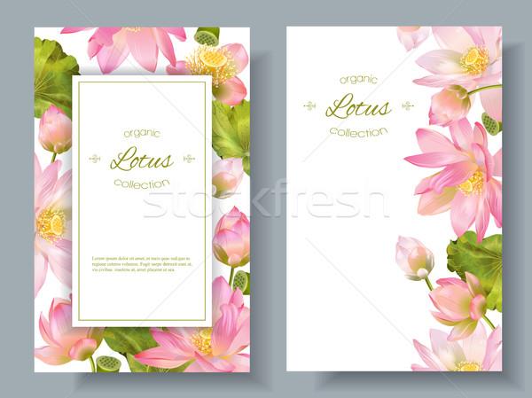 Lotus flower banners Stock photo © PurpleBird