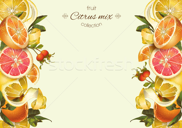 Vintage citrus banner Stock photo © PurpleBird