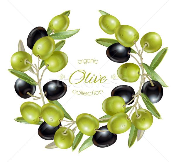 Olive wreath banners Stock photo © PurpleBird