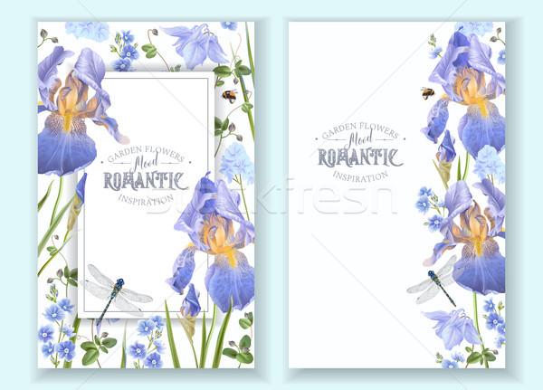 синий цветок Баннеры вектора синий цветы Сток-фото © PurpleBird