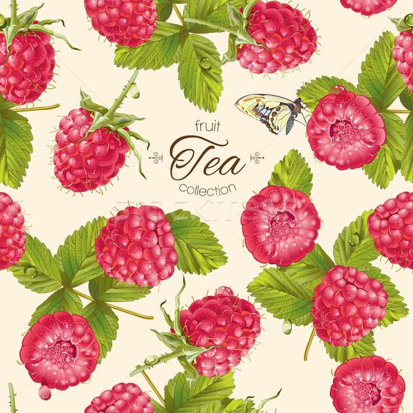 Vektor málna tea minta végtelen minta terv gyümölcs Stock fotó © PurpleBird