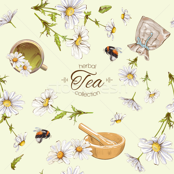 Chamomile tea seamless pattern Stock photo © PurpleBird