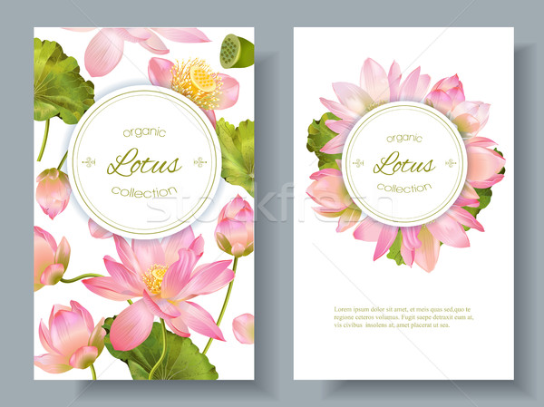 Banners vetor botânico vertical rosa Foto stock © PurpleBird