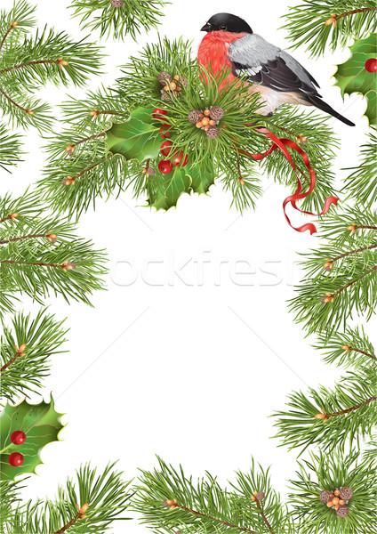 Christmas bullfinch frame Stock photo © PurpleBird