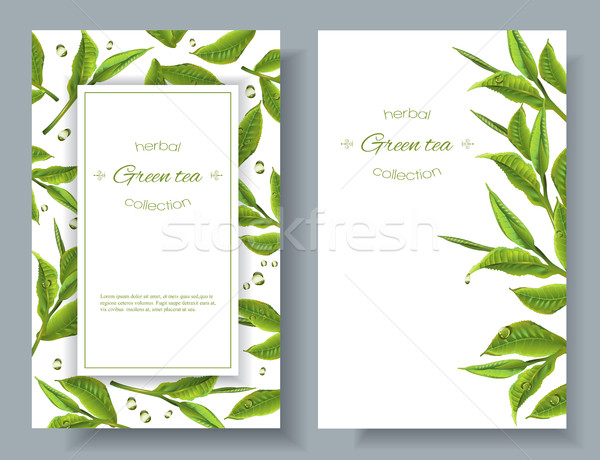 Green tea banners Stock photo © PurpleBird