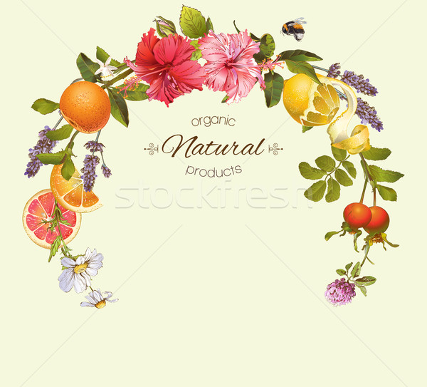 Vector vintage frame Stock photo © PurpleBird