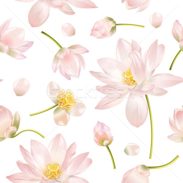 Lotus realistic illustration Stock photo © PurpleBird