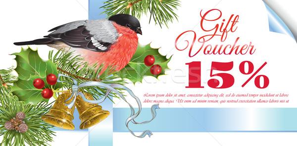 Navidad regalo vale vector tradicional decoración Foto stock © PurpleBird