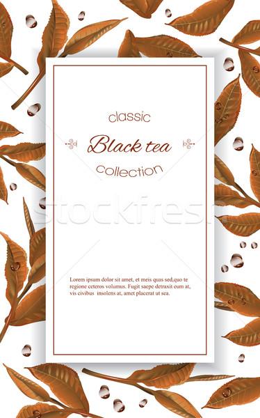 Black tea banner Stock photo © PurpleBird