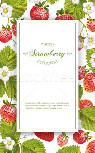 Strawberry vertical banner Stock photo © PurpleBird