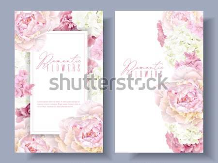 Romantic flowers banner set Stock photo © PurpleBird