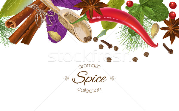 Spice horizontal banner Stock photo © PurpleBird