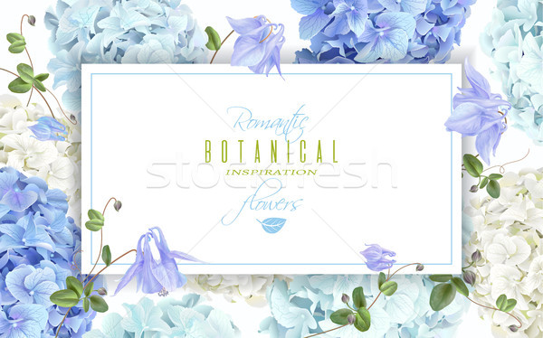 Hydrangea horizontal banner blue Stock photo © PurpleBird