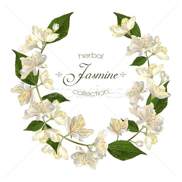 Jasmine flowers wreath Stock photo © PurpleBird