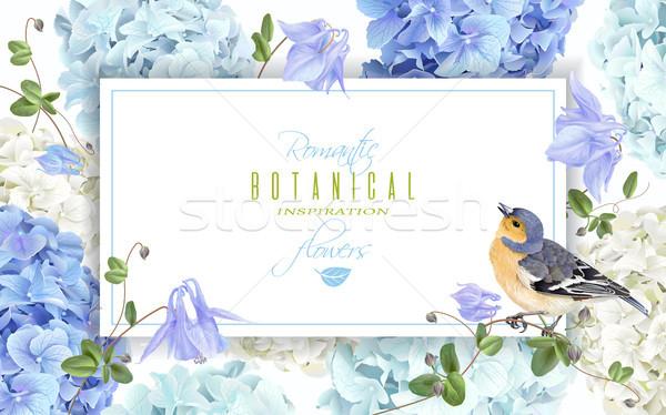 Hydrangea bird banner blue Stock photo © PurpleBird